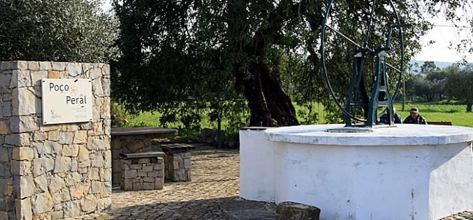 São Brás recibe la primavera con los 'Paseos por la Naturaleza'