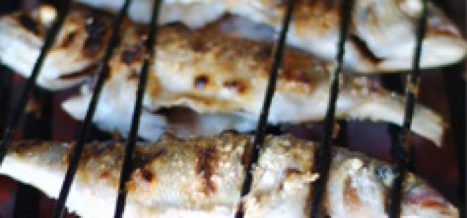 El Festival de Gastronomía del Mar llega a los restaurantes de Tavira