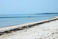 Isla da Armona, una playa paradisíaca frente a Olhão