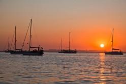 Culatra, un pueblo de pescadores con playas casi vírgenes