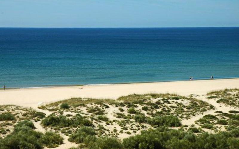 playas verdes espana
