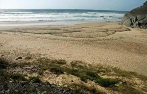 playa-barriga1
