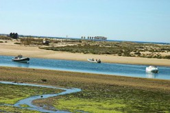 Playa de Isla de Cabanas