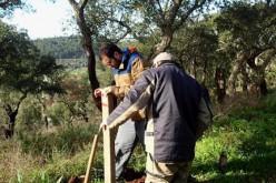 Silves pone a punto la Vía Algarviana