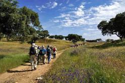 De ruta de senderismo por Ameixial