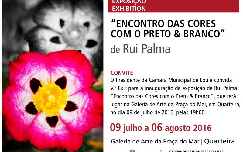 Exposición de Rui de Palma en Quarteira