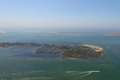 La Ría Formosa, una historia de amor entre el mar y la tierra