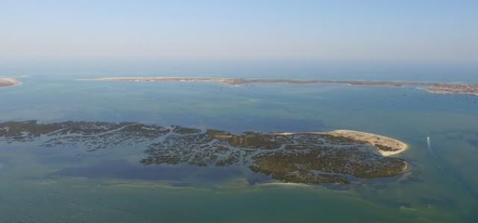 Faro pone a punto la Ría Formosa
