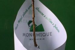Una Navidad más verde, en Monchique