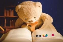 Una noche en la biblioteca, en Silves