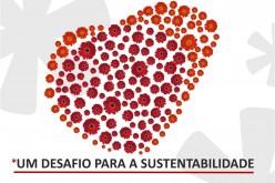 Faro se viste de flores para embellecer Portugal