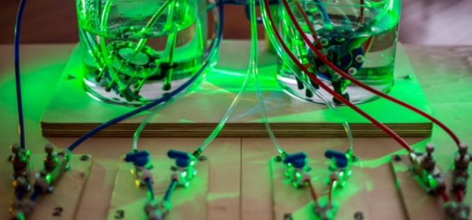 El Som Riscado lleva a Loulé música electrónica para bebés e instalaciones interactivas