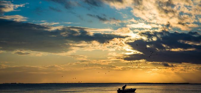 Olhão premia las mejores fotografías sobre el mundo de la pesca