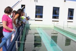 El Algarve conciencia a su entorno sobre el cuidado del medio ambiente