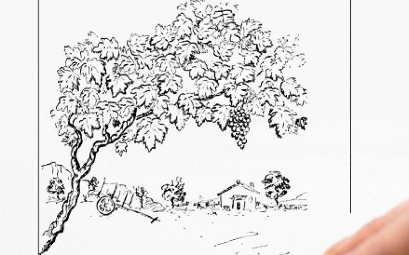 Ana Paula Nunes lleva su muestra 'Provérbios Ilustrados' a la Casa do Sal