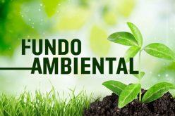 Loulé organiza workshop técnico sobre adaptação dos Espaços Verdes urbanos às alterações climáticas